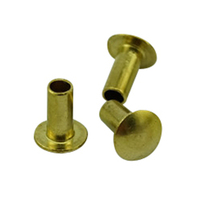 China Manufacturer Non Standard Metal Rivets