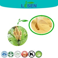 100% Natural Shell Broken Pollen Pini Powder, Free Sample