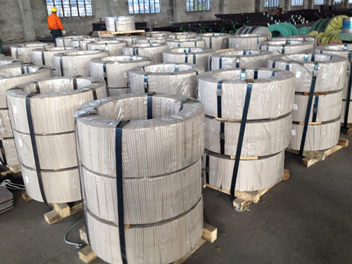 Cold rolled stainless steel strip in coil W.-Nr. 1.4419 ( DIN X38CrMo14 )