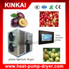 KINKAI dried small fruit drying machine/plum/apricot dryer