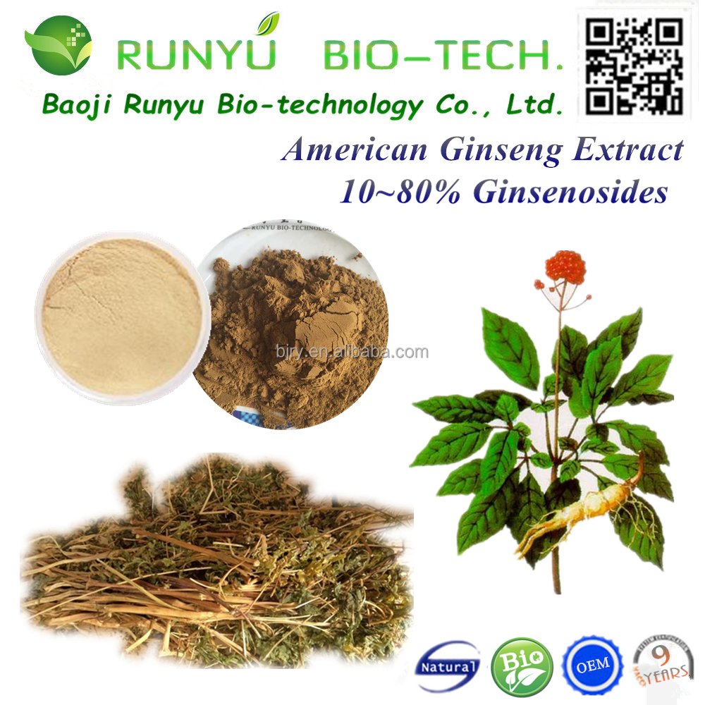 2017 manufacturer supply best price ginseng extract