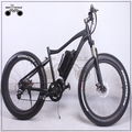 "26"" CE electric bicycle snow bike"