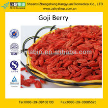 GMP certified factory supply high quality bulk goji berries wholesale goji berry
