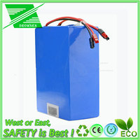 LI-ION KING LiFePO4 Battery Pack 24V 100Ah Lithium ion Phosphate battery