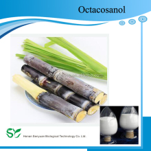 100% natural Sugarcane Extract CAS No. 557-61-9 Octacosanol