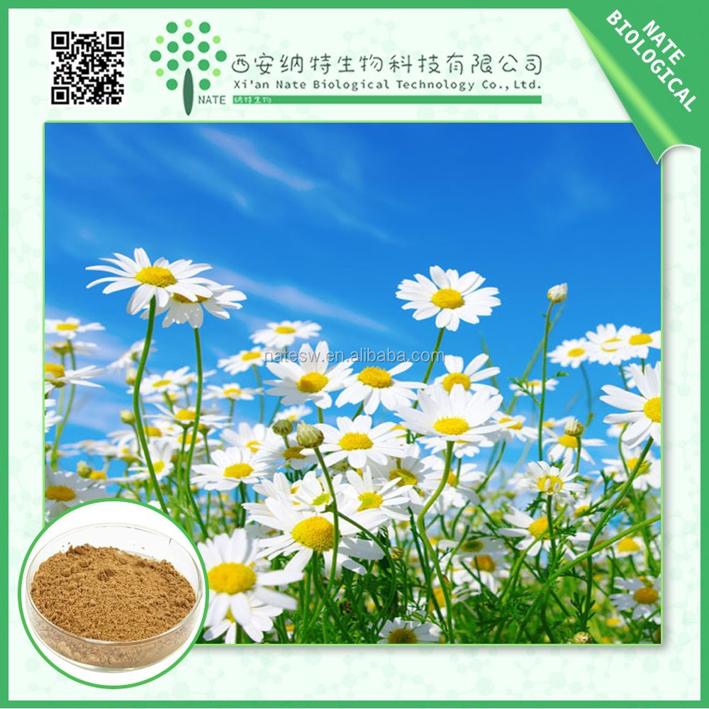 Natural Chamomile Extract Powder 10:1