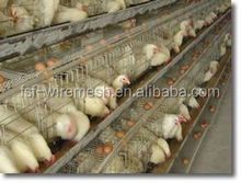 kenya chicken farm hot sale layer poultry battery layer egg chicken cage/poultry farm