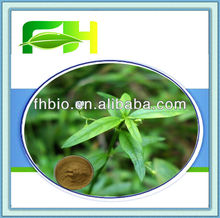 Natural Herb Spreading Hedyotis Herb Extract