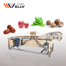 Advanced design spinach/celery/lettuce bubble type washing machine with low price