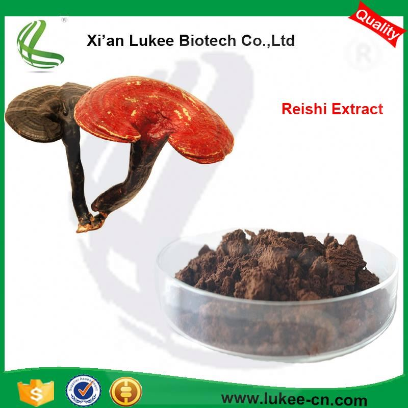 Factory supply Reishi Mushroom Extract P.E Powder polysaccharide 30%