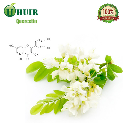OEM Welcome Plant Extract Quercetin 98%,Quercetin Best Price,Quercetin Sample