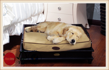 Clear High Grade Luxury wooden Pet Cat Bed wholeasale from China