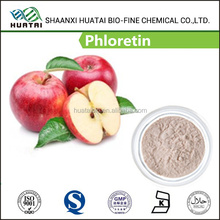 Apple Peel Extract phloretin 98% Powder prevent the production of melanin