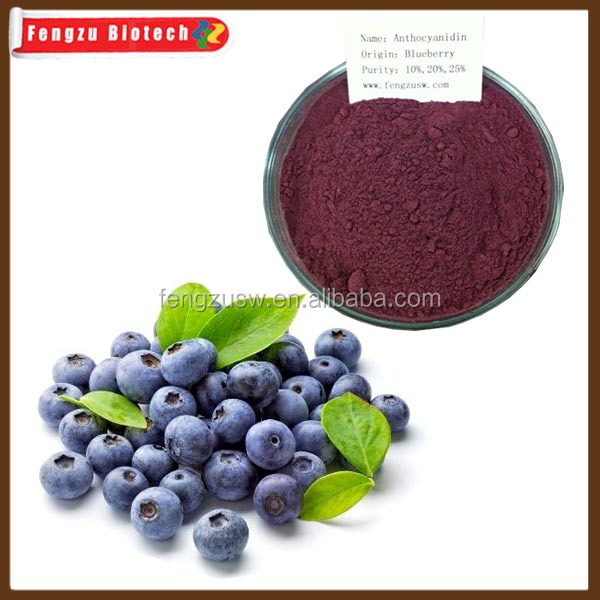 Bilberry Extract,Anthocyanidins20%-25%,EP6/USP standard Bilberry Extract powder