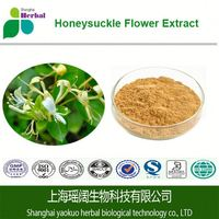 High quality with best price Chlorogenic acid 98%, natural Honeysuckle flower extract