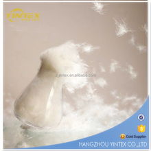 Good quality washed goose feather down filling material from China