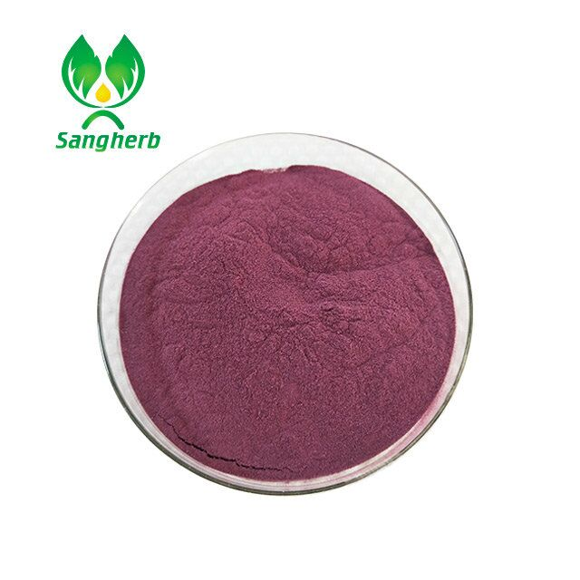 Natrual Elderberry 25% Anthocyanin Black rice Extract for lowing blood pressure