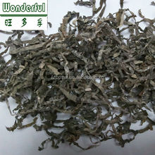 Sun Dried Kelp Seaweed Dried Laminaria Strip for Salad Soup and Snacks