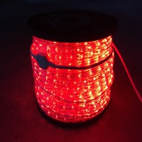Made in China high lumen outdoor led rope lights