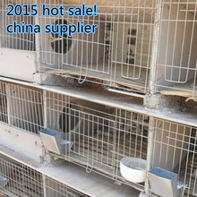 rabbit cages /stainless steel welded wire fence producted by china suppliers