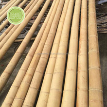bamboo canes/roof high quality construction material