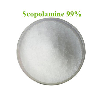 Best Selling Scopolamine 99% Powder with Competitive Price