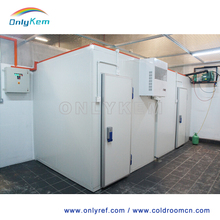ice cream freezer room cool room frozen chicken cold storage room