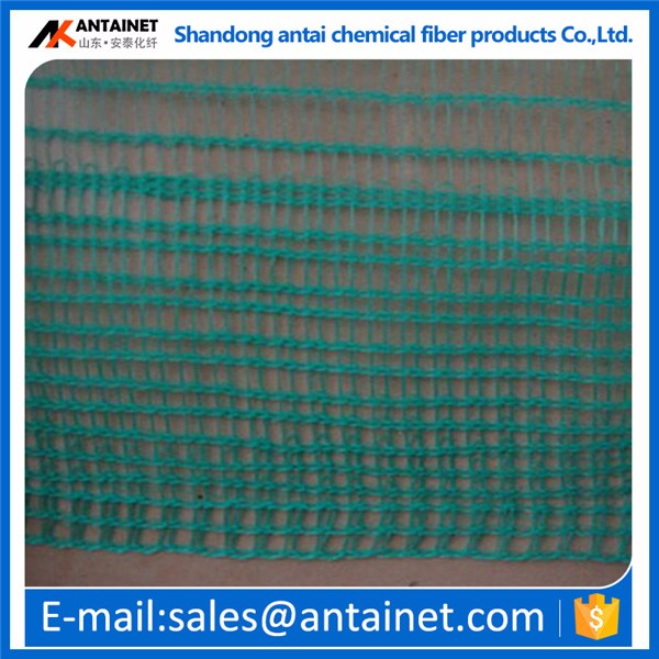 China manufacturer price olive net /plastic fishing net