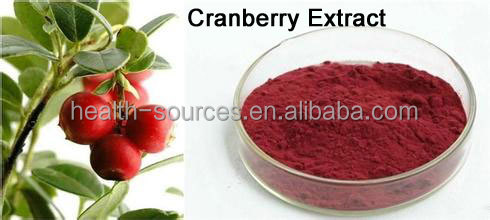 Best selling fruit extract powder Acai berry extract Cranberry Extract