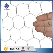Direct factory Hexagonal wire netting /