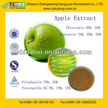GMP Factory Supply 100% Natural Green Apple Extract