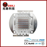 Epileds 20w 30w 50w 80w High Power Red LED Chip 620nm 630nm 650nm 660nm