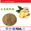 Sheng Jiang High Quality Favorable Price Ginger Extract In Bulk