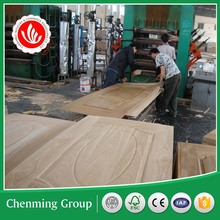 3mm sell well pvc/ melamine/ white primer/ veneer mould door skin