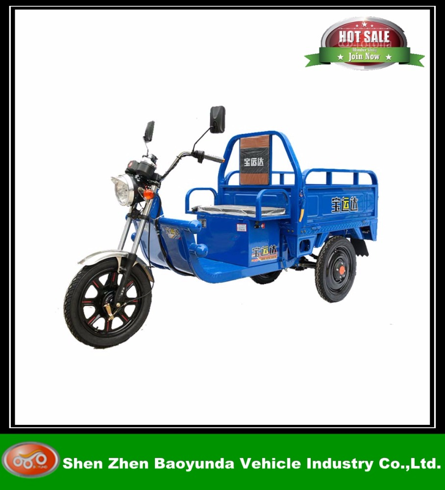 promote sales large mudguard rickshaw electric cargo tricycle in China