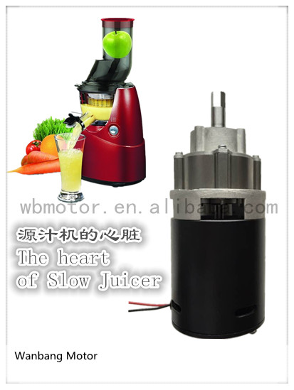 DC Gear Motor for Slow Juicer
