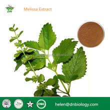 Natural melissa officinalis extract powder, lemon balm extract, Flavones,Rosmarinic acid