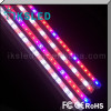 led light colorful acrylic round aquariums aquarium LED lights, ocean light LED,led aquarium light