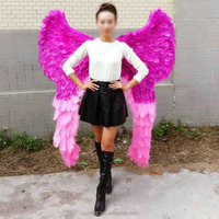 Carnival costume angel wings