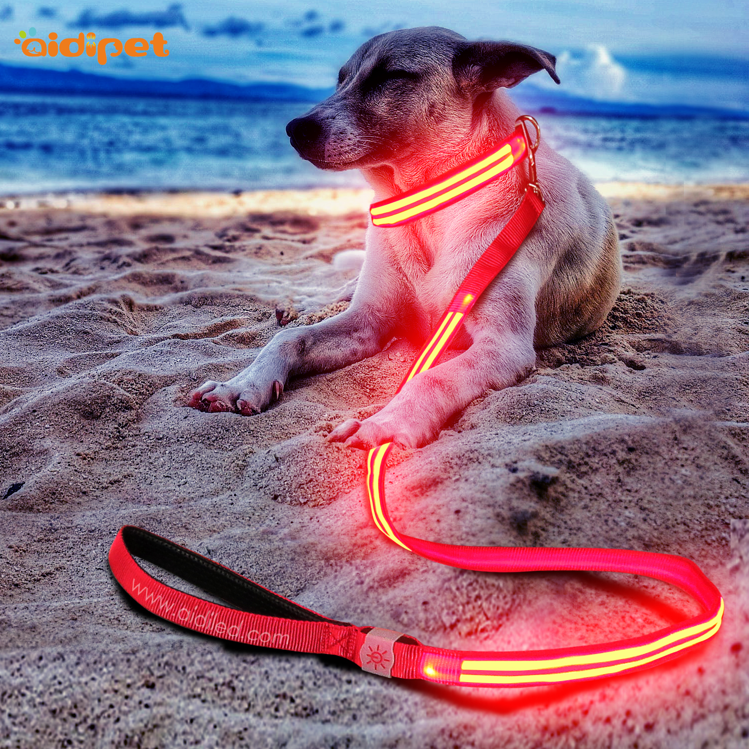 Amazon Top Sell 2019 Rechargeable Dog Collar Light Up Led Dog Leash Colorful Design Pet Supplies