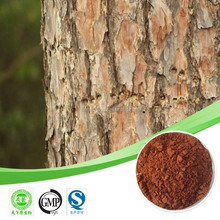 pine bark extract(95% opc) /french maritime pine bark extract / pine bark extract opcs