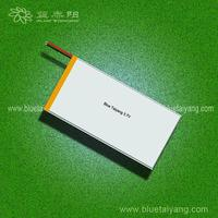9055112 5600mAh li ion battery pack 25.2v ,lithium polymer battery
