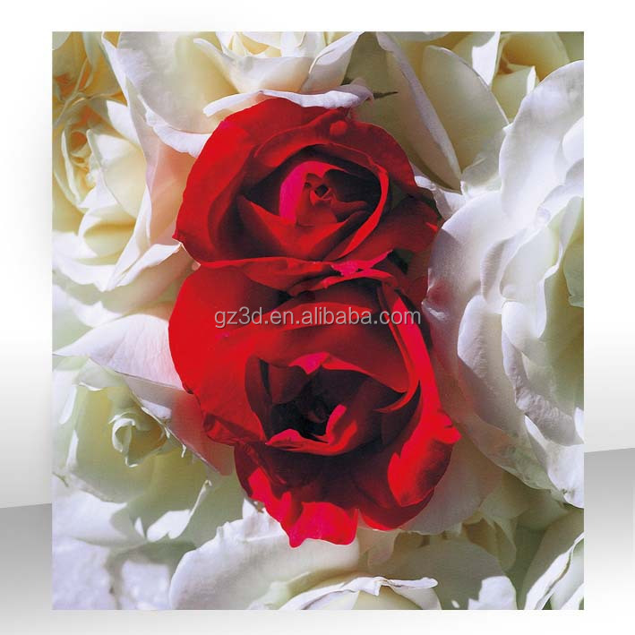 Beautiful flower red rose still life 3d search details picture