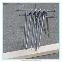 10d polished common iron nails in china factory