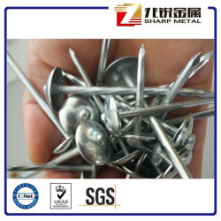Twisted Shank Roofing Nail /Galvanzied roofing nails twisted shank