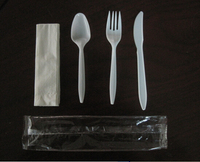 Low Cost Disposable Plastic Cutlery Pack spoon knife fork tissue salt sachet 5pcs 1set