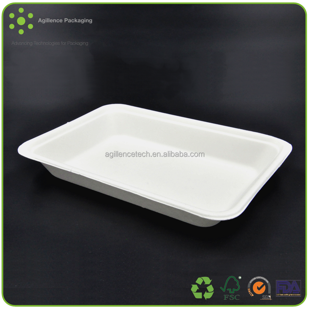 2015 10*5 Inches Disposable Flate Rectangle Shape Sugarcane Dinner Plates