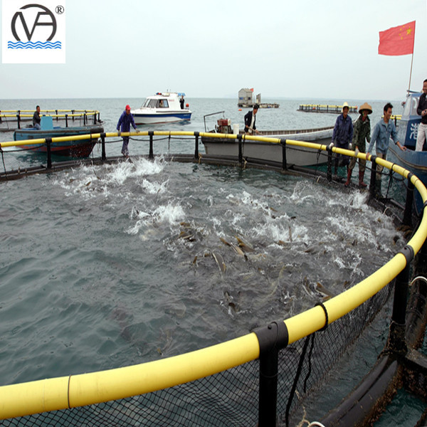 Circle floating aquaculture fish farming cages made of PE knotless net