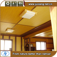 Modern wood plastic water/fire/insect proof wpc living room ceiling design