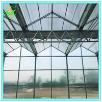 Low Cost Venlo Roof Agricultural Pc